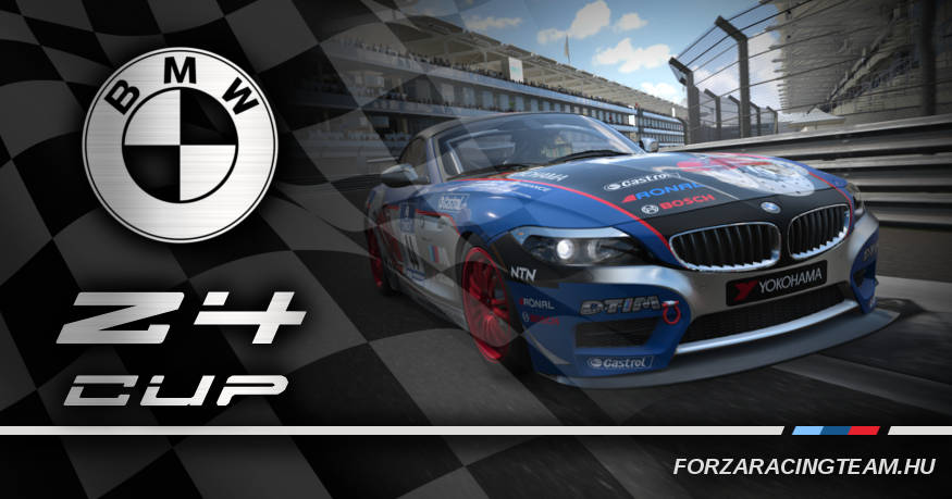 Z4 cup