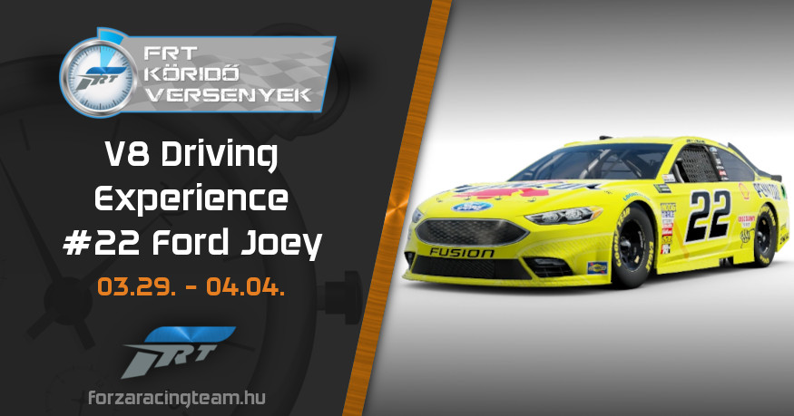 #22 Ford Joey